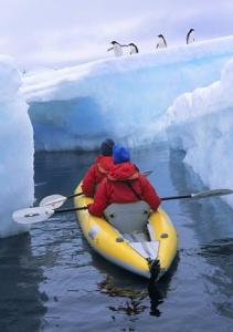 kayak dans l'Antarctique au milieu des glaciers et des pingouins